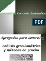Expo Concretos Hidraulicos.pptx