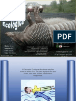 Educacao Ecologica SOM