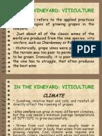 Wine PP Part 1