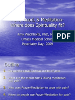Pain, Mood, & Meditation- Where does Spirituality fit?- By