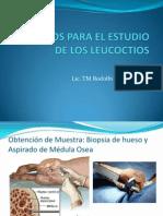Metodos de Estudio de Leucocitos.