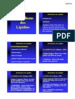 Metabolismo Dos Lipidios 2010
