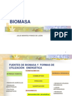 Biomasa - Julio Montes - 271004