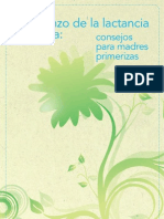7-16b-breastfeeding-spanish.pdf