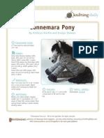 KN_WEB_pony