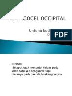 Meningocel Occipital