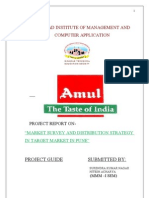 Mahendra Amul Project