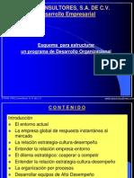 Programa Desarrollo Organizacional