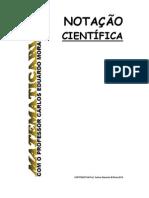 matematicarlos - notacao cientifica