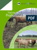 Produccion Bovina