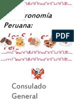 Novo Andina