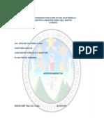 Investigacion Pae Mendez 12-10-11