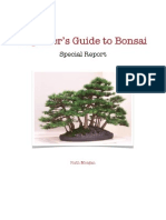 Ruth Morgans Beginners Guide to Bonsai