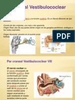 Diapos Vestibulococlear completas