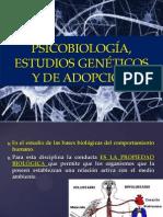 5.- PSICOBIOLOGÍA, ESTUDIOS GENETICOS Y DE ADOPCION