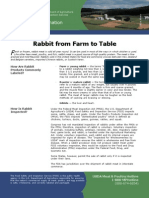 Rabbit From Farm to Table