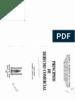 Principios de Derecho Comercial_Madriñan de la torre