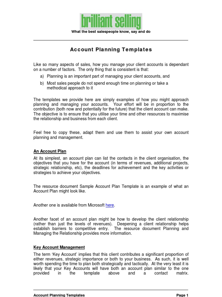 account planning templates sales business