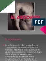 El Abdomen