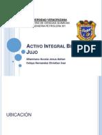 Activo Integral Bellota-Jujo