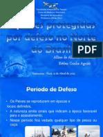 Espécies protegidas por defeso no Brasil