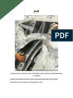 Sobre Postmodernidad Apuntes para documenta en Museo de Artes Visuales del Táchira MAVET 2014