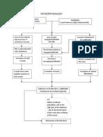 Patho Chronic Calculous Cholecyctitis