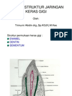 Ikg-08 Slide Biologi Struktur Jaringan Keras Gigi (2)