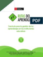 Fascículos para la gestión de los aprendizajes en las instituciones educativas
