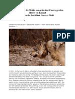 URGENT ACTION ALSchützen Wir die Wölfe, denn sie sind Unsere großen Helfer im Kampf englisch