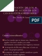 COMBINACIÓN__DE__LOS___8_PUNTOS_DE_ACCION_DE
