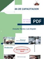 Programa de Capacitacion2