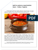 In jurul lumii in cautarea experientelor culinare - Gulas, Ungaria