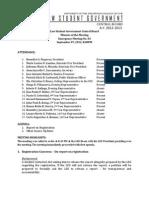 LSG Minutes of Emergency Meeting No.4.pdf