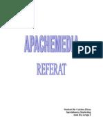 Agentia de Publicitate Apachemedia