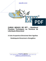 EFT- Manual - Andre Lima