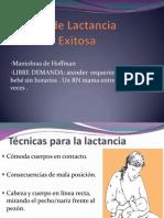 Técnica de Lactancia Materna Exitosa