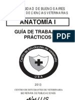 Gu�a Anato 1 NUEVA.pdf