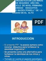 Diapositiva de Pip`Aymara