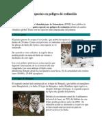 Diez Especies en Peligro de Extincion