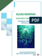 Algas Marinas Seeleben Cris Eirl