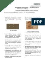 4.4. Terminos Usados en Ptologia y Rehabilitacion