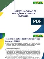 Mecanismos Nacionais de Proteção dos DH
