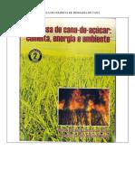 Capitulos Colheita Biomassa Cana