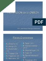 Inervacion de La Cabeza[1]