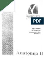 ANA005 AP. Urinario Reproductor Hembra