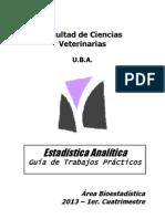 Analitica Guia 2013