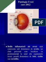 6.Patologia Uveei