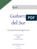Guitarra Del Sur