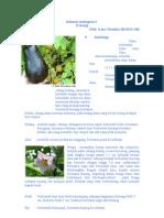 Solanum Melongena L